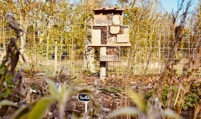 Maak je eigen insectenhotel