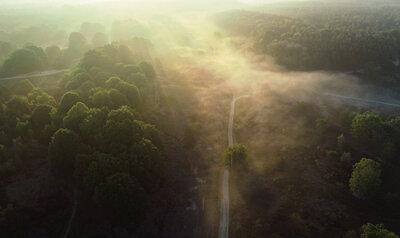 Machtige zonsopkomst in het nationaal park Hoge Kempen