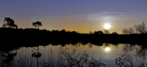 vilda-95010-maansopkomst-boven-vijver-bert-willaert-800-px-46359-e1581441053102.jpg