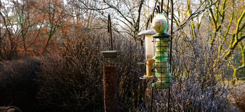 onze-natuur-in-je-tuin-header-2.jpg
