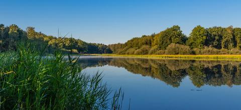 vallei-ziepbeek23-7-1.jpg