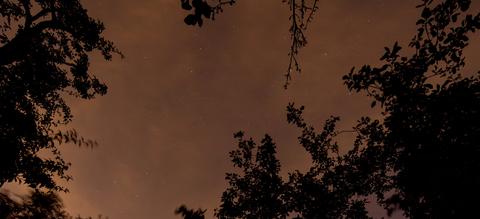 header-lichtvervuiling-sterrenhemel-kunstmatig-licht-1.jpg