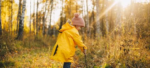 herfstgids-voor-kids-onze-natuur.jpg