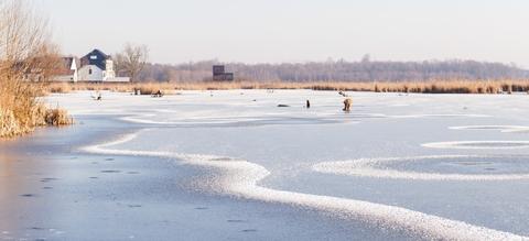 vilda-patronen-in-sneeuw-en-ijs-op-het-vinne.jpg