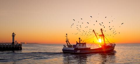 vissersboot-nieuwpoort.jpg