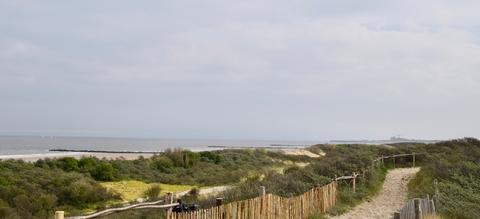 zwinduinen-en-polders-36b.jpeg