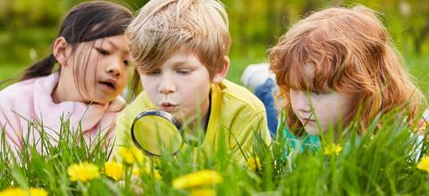 zomeractiviteiten-kinderen.jpg