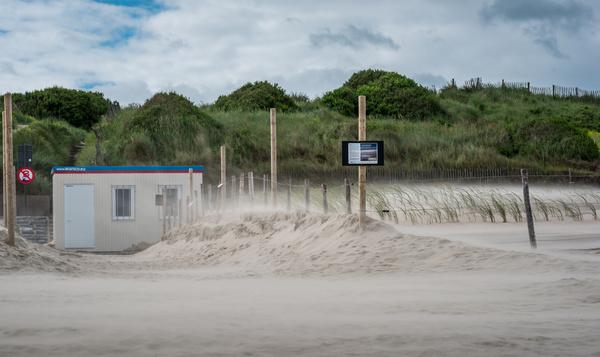 Nieuwe duinen groeien in Oostende