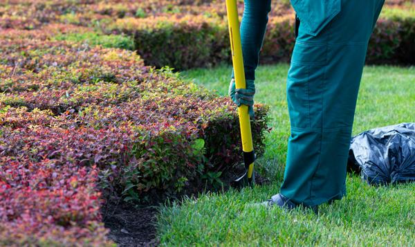 5 nuttige tuinklusjes in de herfst