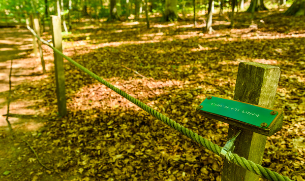 Wandelpaden in de natuur voor blinden en slechtzienden