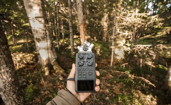 Faunachallenge #4: Spits je oren en neem een wild geluid op met je telefoon
