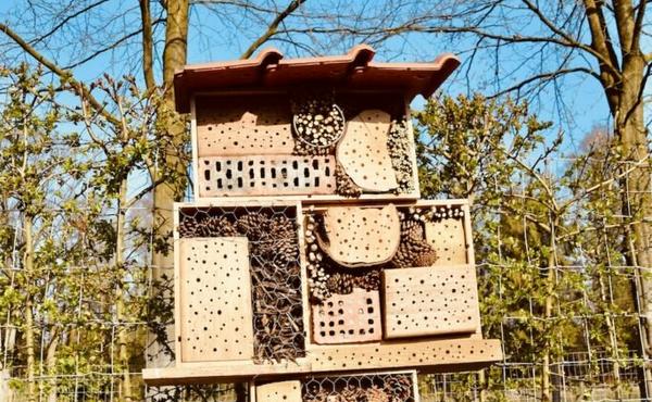 5. Bouw een nestkast of insectenhotel