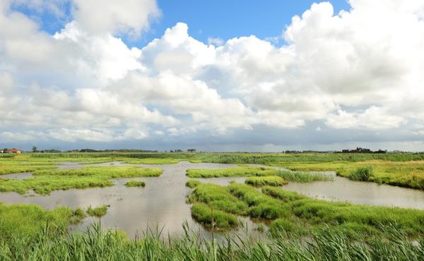 Uitkerkse polder (Blankenberge)