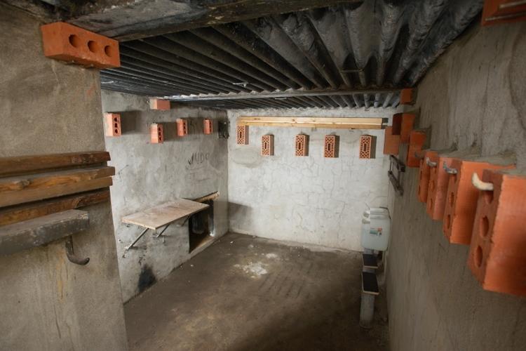 vilda-72693-een-voor-vleermuizen-ingerichte-bunker-jeroen-mentens-800-px-45171.jpg