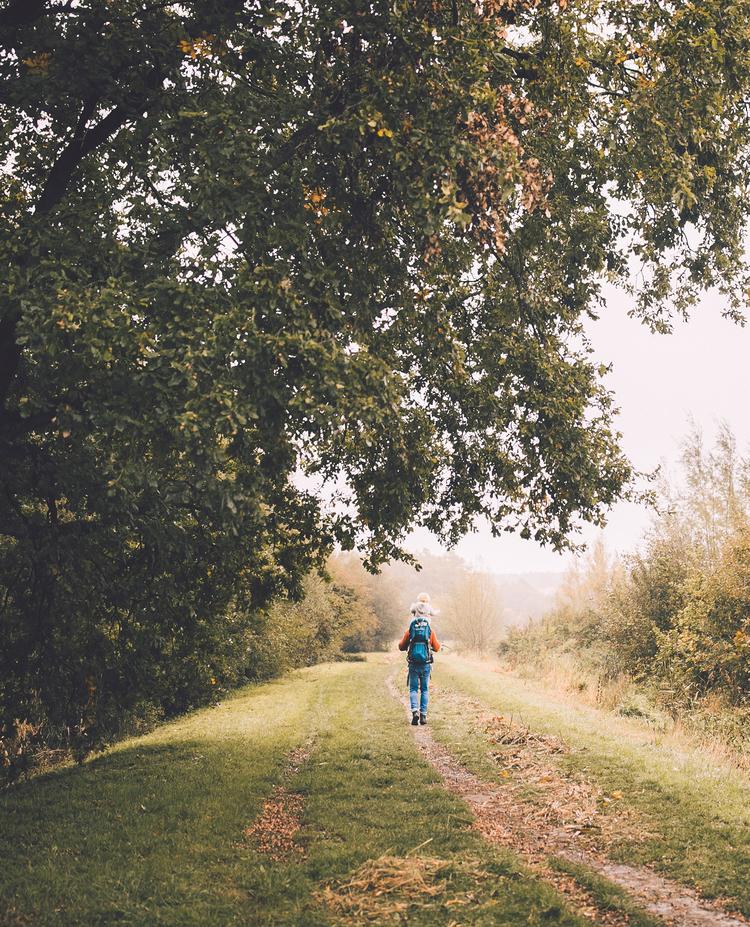 wandelgoesting-wandeling-herfstgids-onze-natuur.jpg