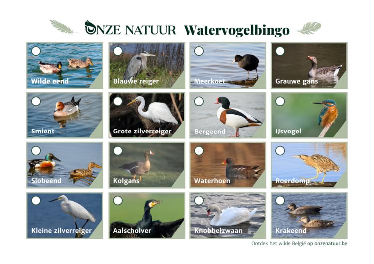 watervogelbingo.png