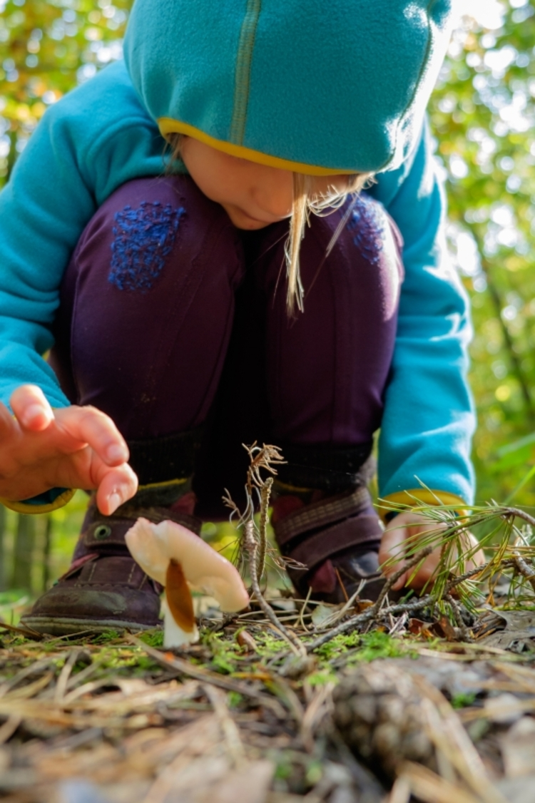 vilda-109248-meisje-bekijkt-paddenstoel-jeroen-mentens-800-px-50901.jpg