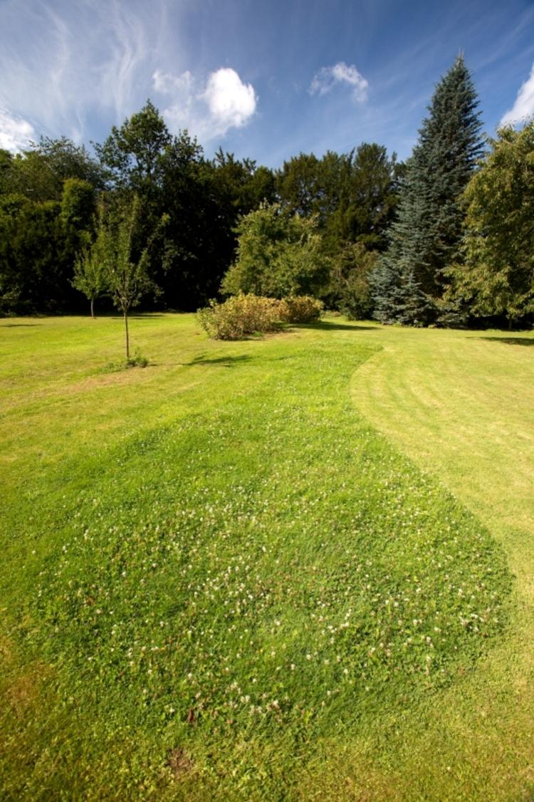 Een gefaseerd gemaaid gazon met ronde bochten geeft je tuin een natuurlijke en creatieve uitstraling.