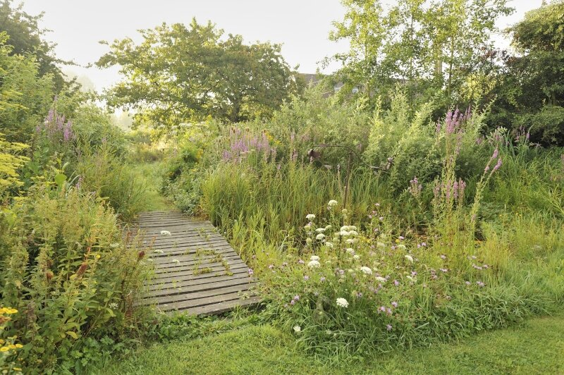 vilda-76578-natuurlijke-tuin-rollin-verlinde-800-px-47170.jpg