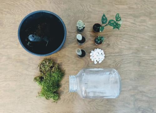 Benodigdheden planten terrarium DIY