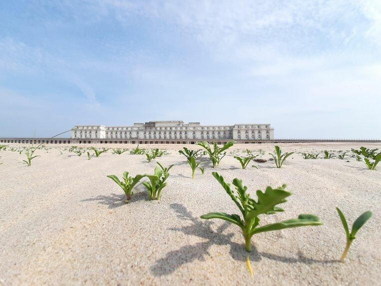 annick-aerts-thermae-palace-hotel.jpeg