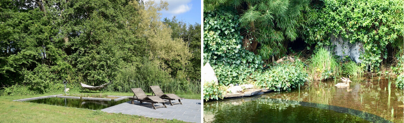 Links een strakke vijver in natuurlijke omgeving, rechts een folievijver in een wilde stadstuin