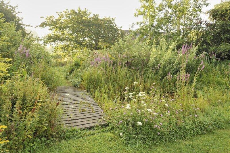 Een wilde tuin met bloemenborders, hoge grassen en een natuurlijke vijver
