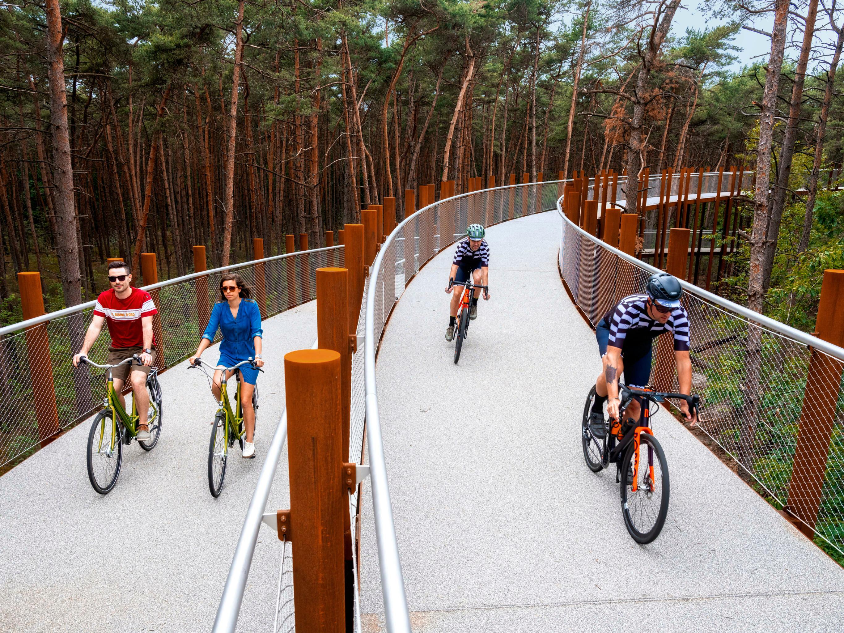 fietsen-door-de-bomen-in-bosland-9873-4.jpg