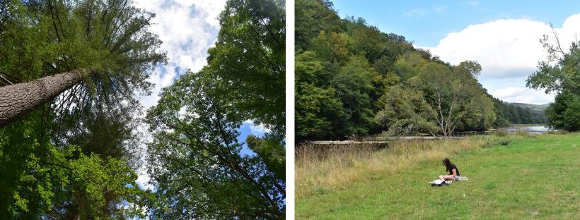 Links: zicht op boomkruinen; Rechts: kaartlezen aan de oever van de Semois