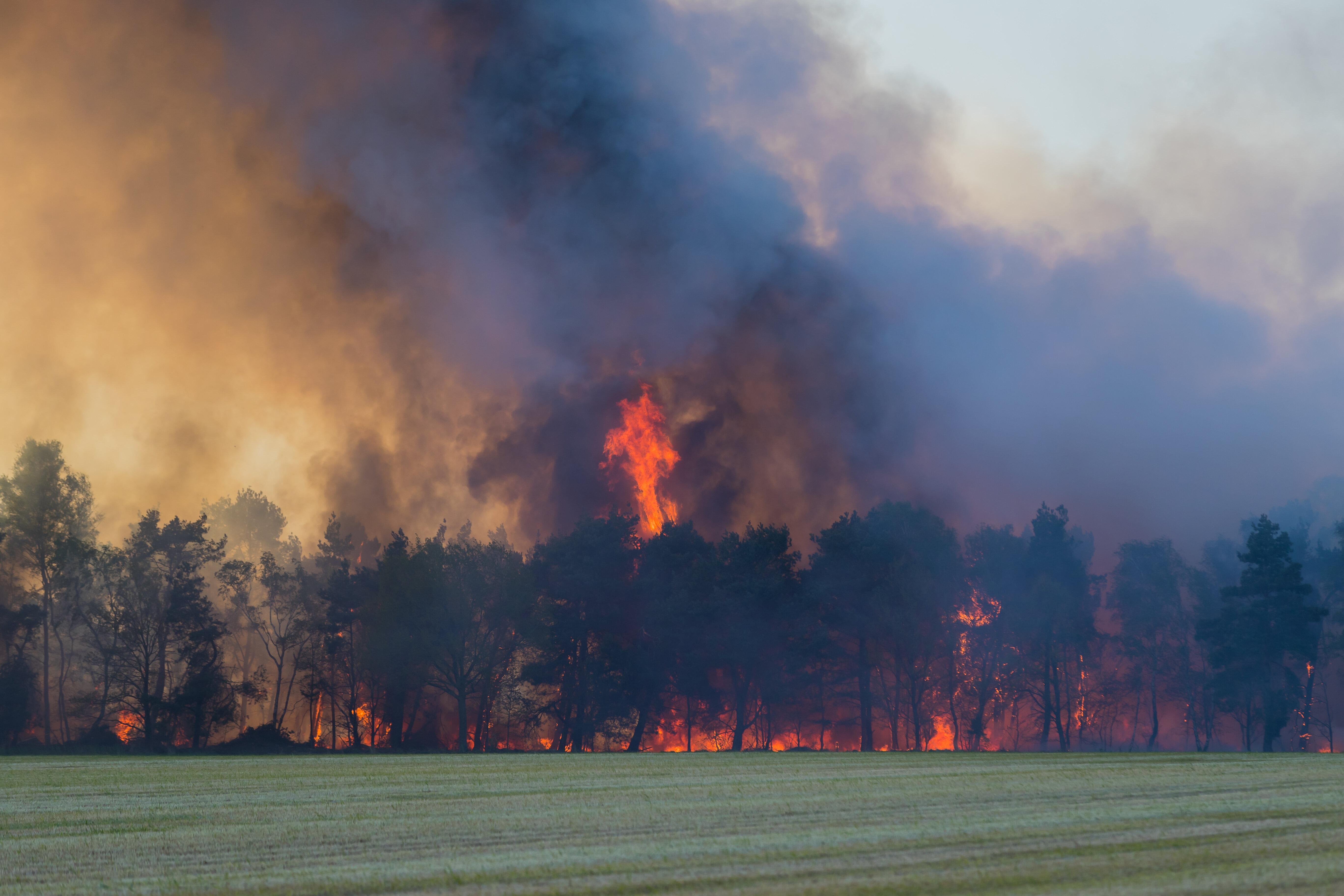 Brand in De Liereman