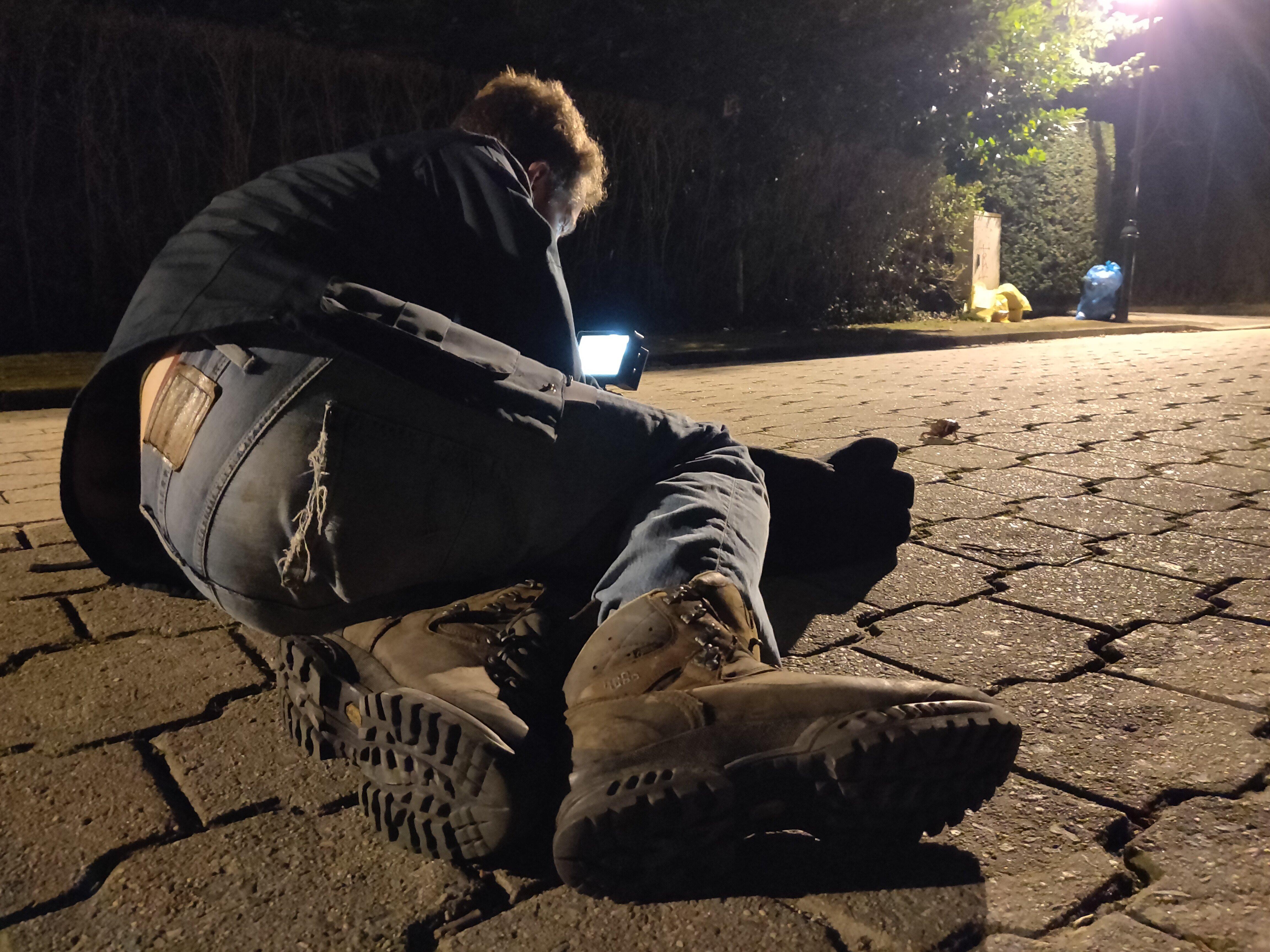 Pim ligt op het wegdek om padden te filmen