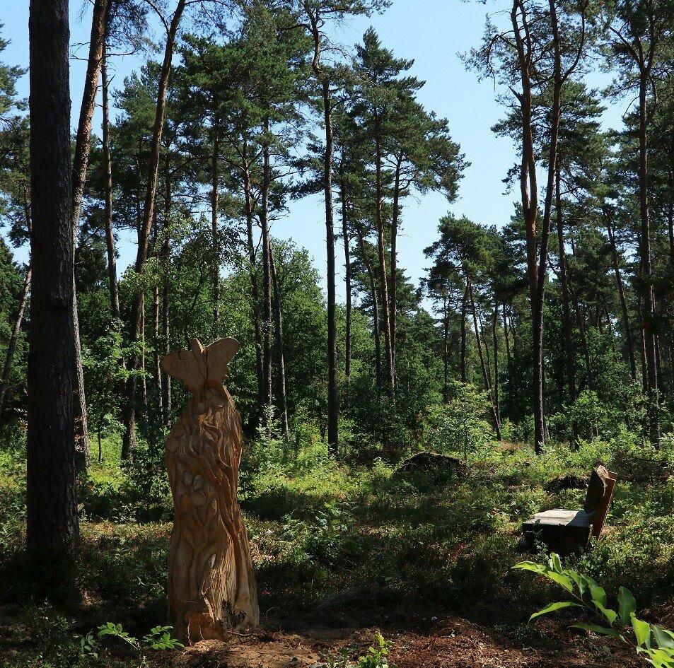 Natuurbegraafplaats Rekem Zone Vlinder