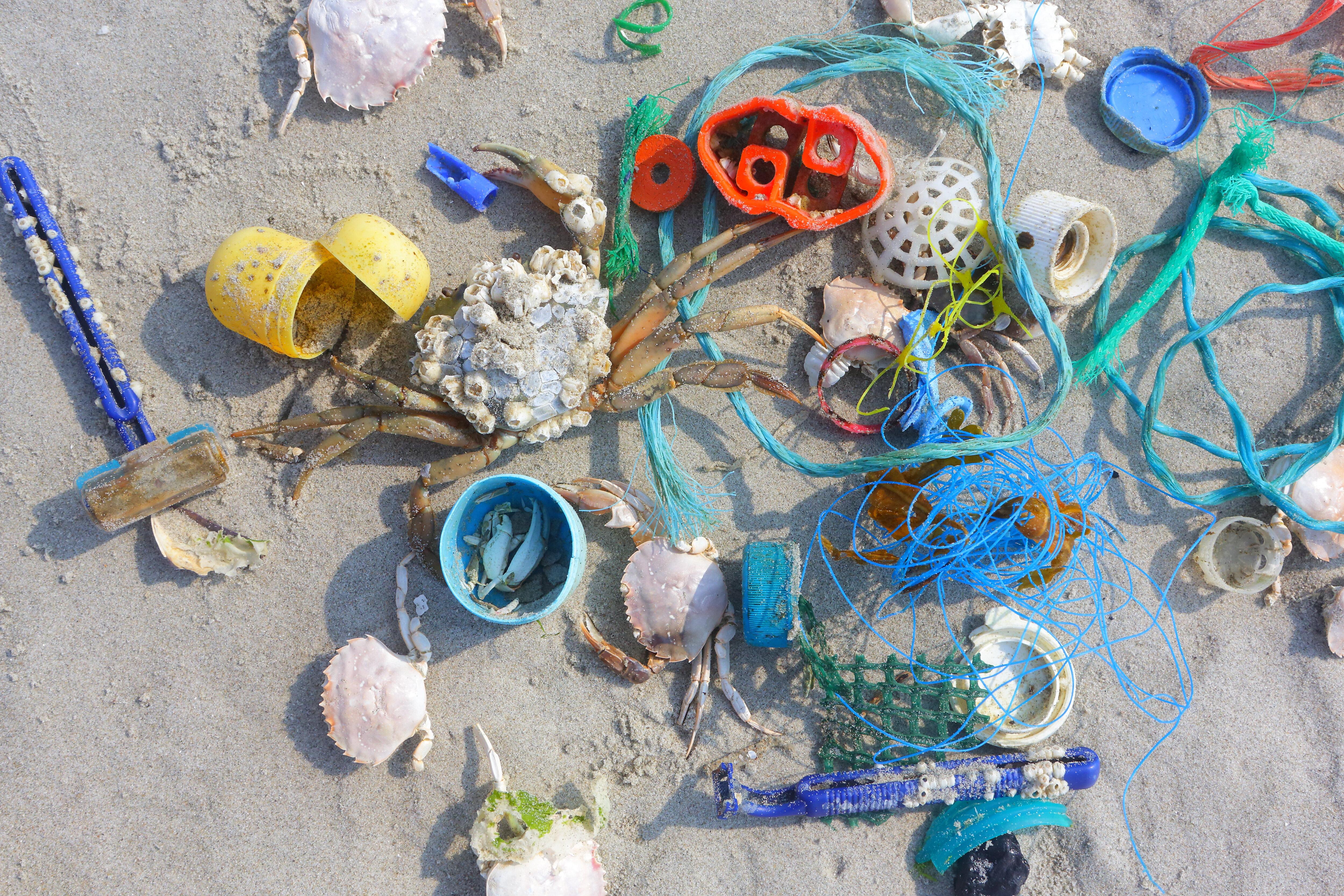Plastic op het strand van de Noordzee
