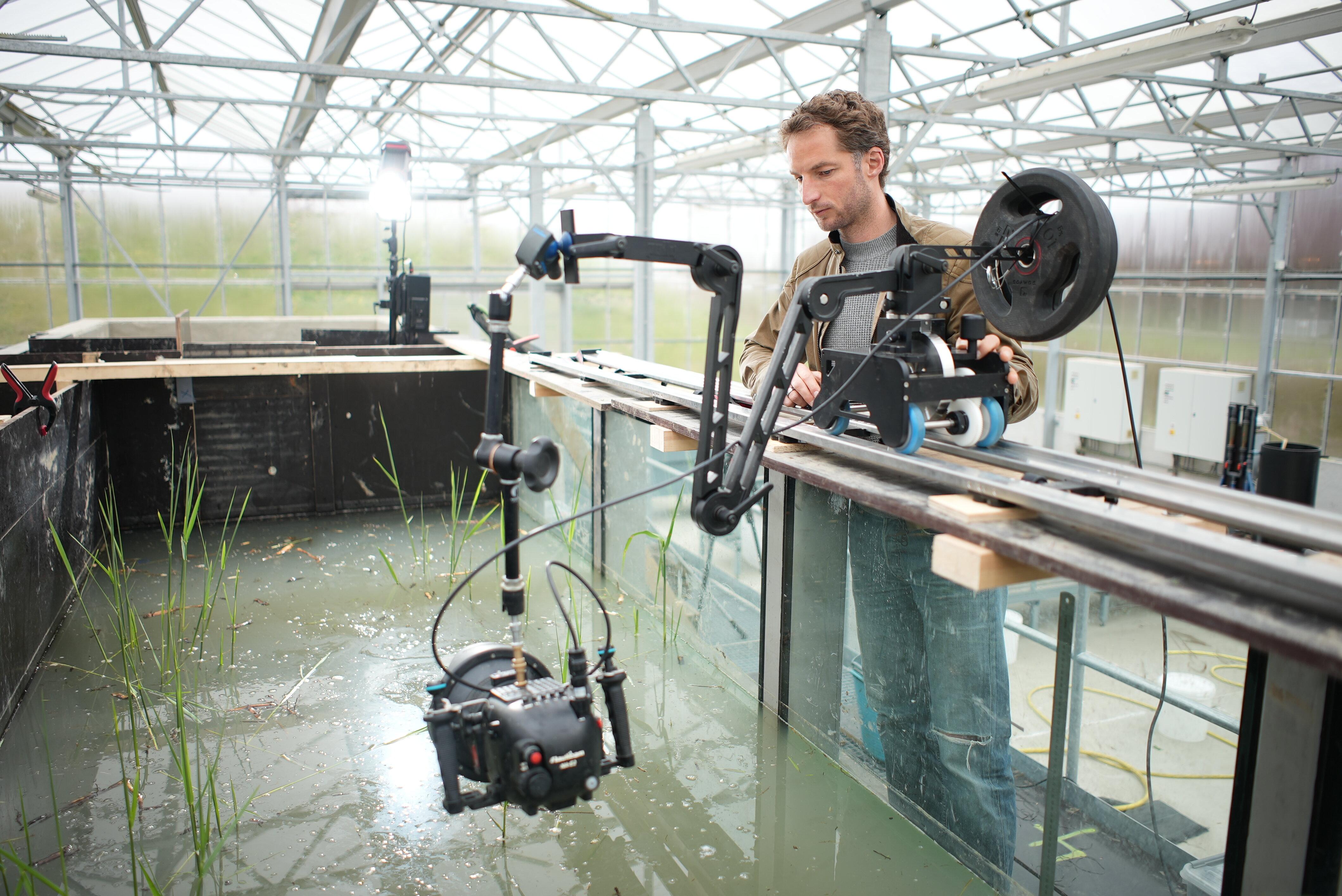 Pim filmt wolhandkrab in de flume