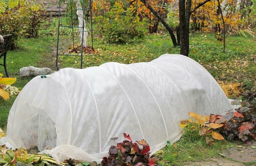 moestuin-herfst-onze-natuur.jpeg