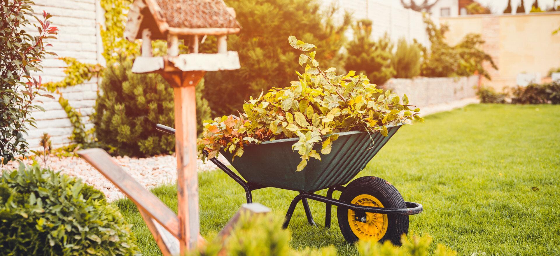 tuin-herfst-kruiwagen-bladeren.jpeg